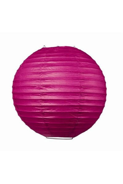 Lampion d coration fushia for Fushia exterieur